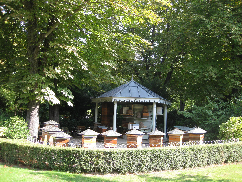 Bee Garden In Luxembourg Gardens, Paris